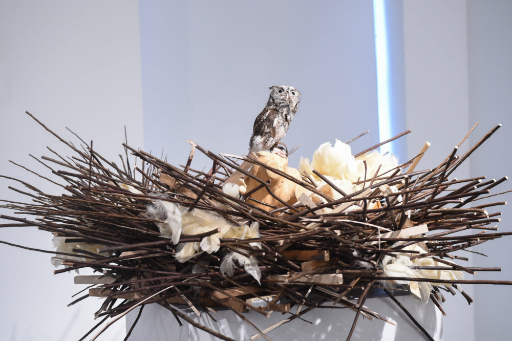 New York Academy of Art's Tribeca Ball 'Magical Menagerie' Brings an Art Safari to NYC