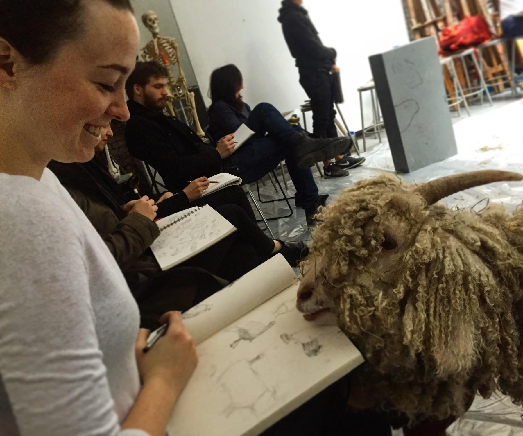 Meet the Inspiring Animals That Infiltrated a New York City Art School