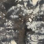 Eric Mavko (MFA 2005) Tree 1 (AZ), 2016 oil on paper 24 x 36 inches
